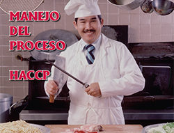 Food Safety – Managing the HACCP Process (Spanish)