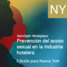 Sexual Harassment Prevention for the Hospitality Industry, New York Ed. (Spanish)