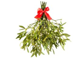 Ban the Mistletoe for Harassment-Free Holiday Parties